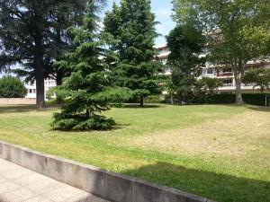 Un parc arboré 20130627_125120-300x225